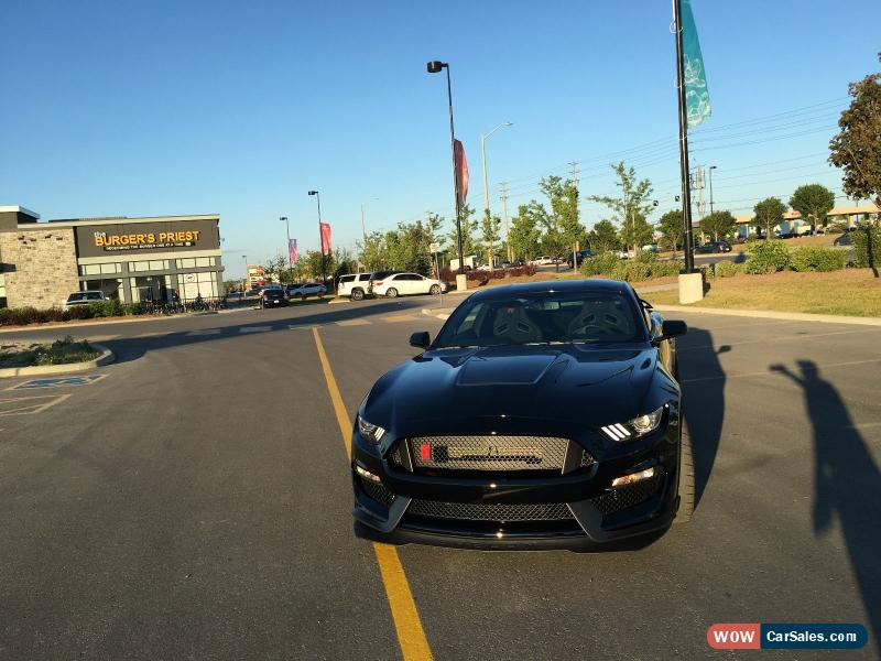 Gt350r For Sale >> 2016 Ford Mustang For Sale In Canada