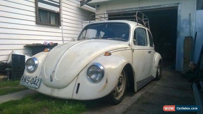 Volkswagen Beetle 1969 slammed rat