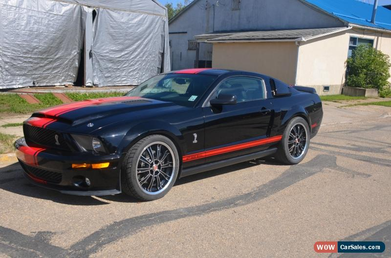 Super Snake For Sale >> 2007 Ford Mustang For Sale In Canada