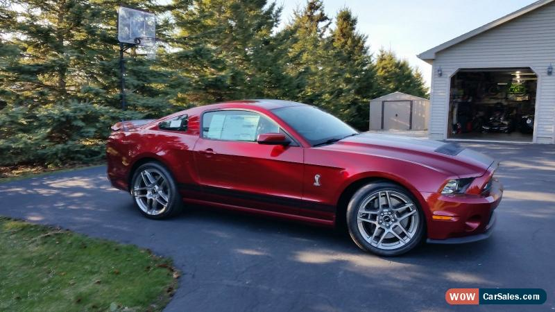 classic 2014 ford mustang shelby gt500 coupe 2 door gt350 for sale. Cars Review. Best American Auto & Cars Review