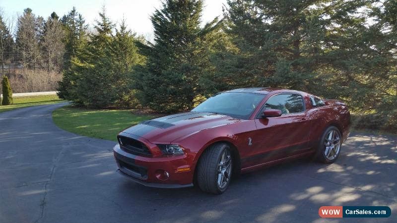 2014 Ford Mustang For Sale In United States