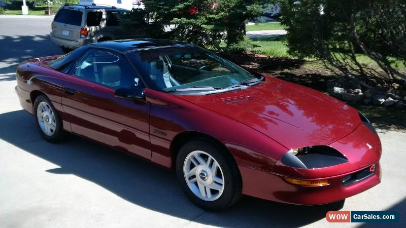 1995 chevrolet camaro for sale in canada. Black Bedroom Furniture Sets. Home Design Ideas