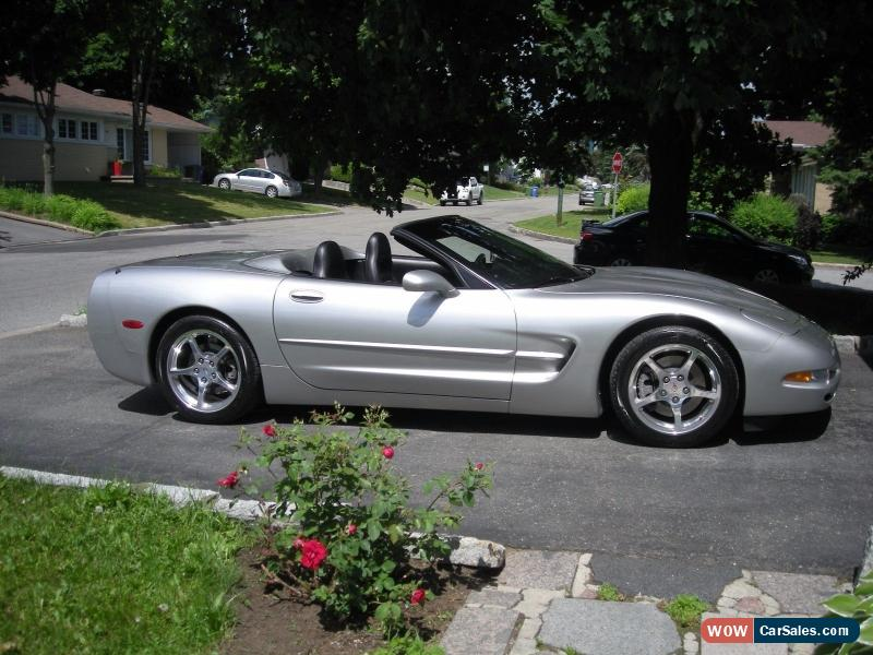 2004 chevrolet corvette for sale in united states. Black Bedroom Furniture Sets. Home Design Ideas