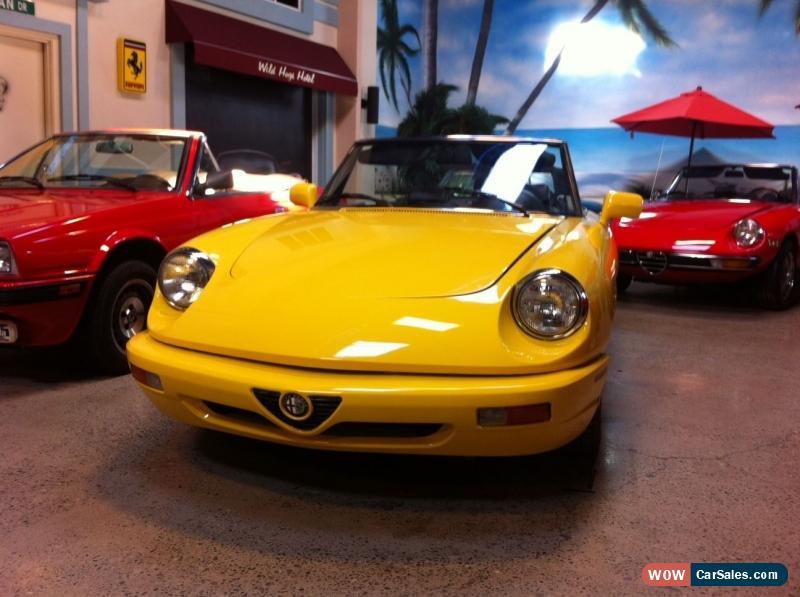 Alfa Romeo Spider For Sale In Canada - 1986 alfa romeo spider veloce for sale