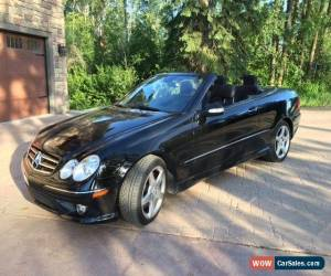 Classic 2007 Mercedes-Benz CLK-Class CLK550 Convertible for Sale