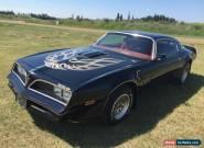 Pontiac : Trans Am for Sale