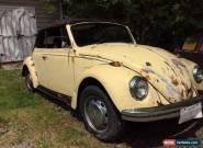 Volkswagen: Cabrio for Sale