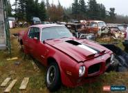 Pontiac : Trans Am  Formula 400 for Sale