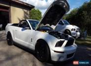 Ford: Mustang GT500 for Sale