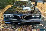 Classic 1977 Pontiac Trans Am more picture drop box link available for Sale