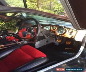 Lamborghini Diablo Mix Father Unknown For Sale In Australia