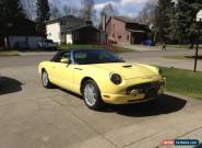 Ford: Thunderbird for Sale