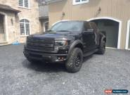 Ford: F-150 Special edition package for Sale