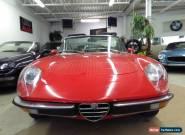 1971 Alfa Romeo Spider for Sale