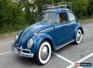 1960 Volkswagen Beetle - Classic for Sale