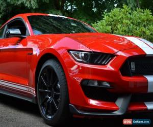 Classic 2016 Ford Mustang GT350 for Sale