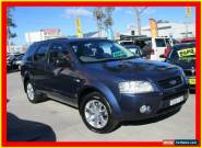 2008 Ford Territory SY TS Blue Automatic A Wagon for Sale