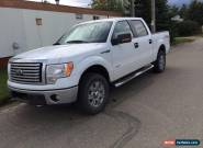 Ford: F-150 XLT for Sale