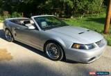 Classic 2003 Ford Mustang for Sale