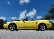 2003 Ford Mustang Premium Convertible for Sale