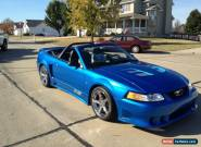 2000 Ford Mustang S281 for Sale