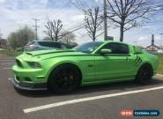2013 Ford Mustang for Sale