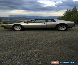 Classic 1978 Lotus Esprit for Sale