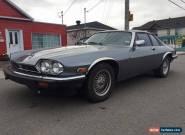 Jaguar : XJS for Sale