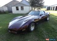 1980 Chevrolet Corvette Coupe for Sale