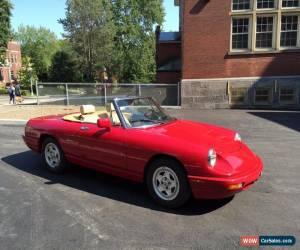 Alfa Romeo Spider For Sale In Canada - Alfa romeo spiders for sale