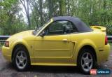 Classic 2003 Ford Mustang Base Convertible 2-Door for Sale