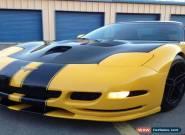 2002 Chevrolet Corvette Base Hatchback 2-Door for Sale