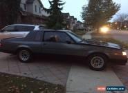 1986 Buick Regal WH1 Designer Paint for Sale