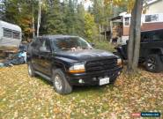 Dodge: Durango for Sale