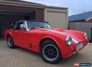 1958 Austin Healey Bugeye Sprite Special (NO RESERVE) for Sale