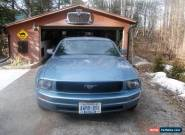 Ford: Mustang for Sale