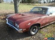 1971 Buick Skylark for Sale