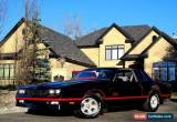 Classic 1988 Chevrolet Monte Carlo NO RESERVE for Sale