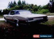 Pontiac: Le Mans Convertible for Sale
