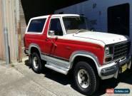 FORD BRONCO 1981 XLT V8 351 for Sale