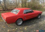 1966 Ford Mustang 4 speed for Sale