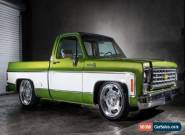 1976 Chevrolet Other Pickups SCOTTSDALE for Sale