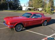 1965 Ford Mustang coupe for Sale