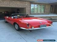 1965 Alfa Romeo Spider SPIDER for Sale