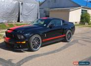 2007 Ford Mustang GT500 Super Snake clone new dyno 767 HP for Sale