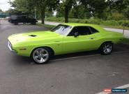 Dodge : Challenger for Sale