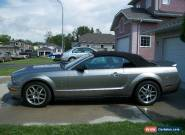 Shelby : GT500 convertible for Sale