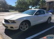 2010 Ford Mustang Base Coupe 2-Door for Sale