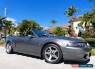 2003 Ford Mustang SVT Cobra Convertible 2-Door for Sale
