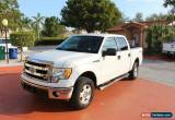 Classic 2013 Ford F-150 XLT Crew Cab Pickup 4-Door for Sale
